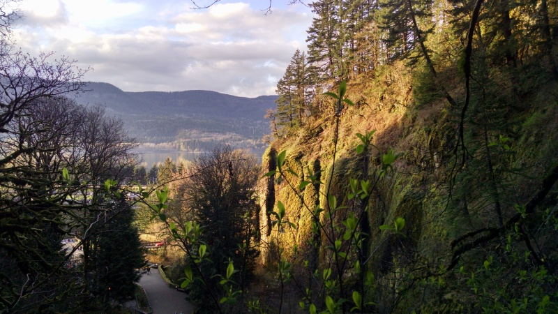 View of the Columbia River Gorge nearing sunset from the hike away from the water to the top of Multnomah falls.
