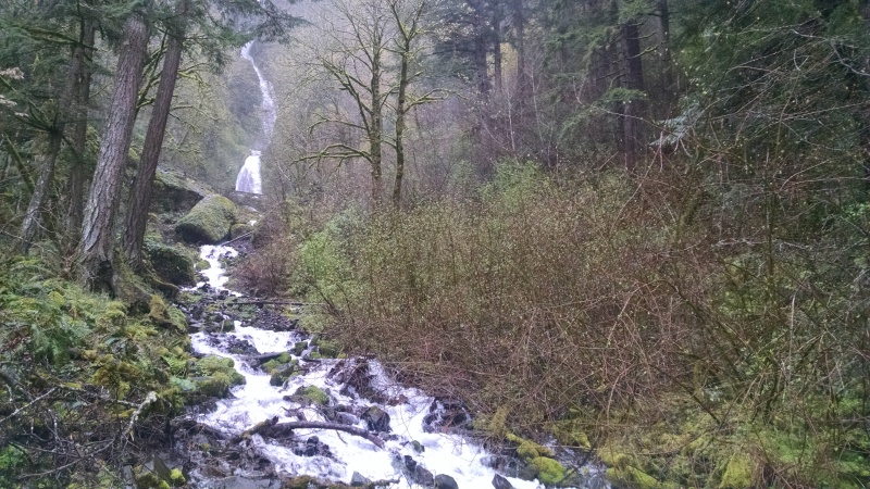 View of Wahkeena Falls in the distance, a short steep hike away from the roadside.