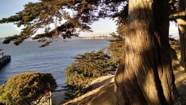 View of Alcatraz Island from Presidio.